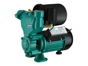 Domestic Pump